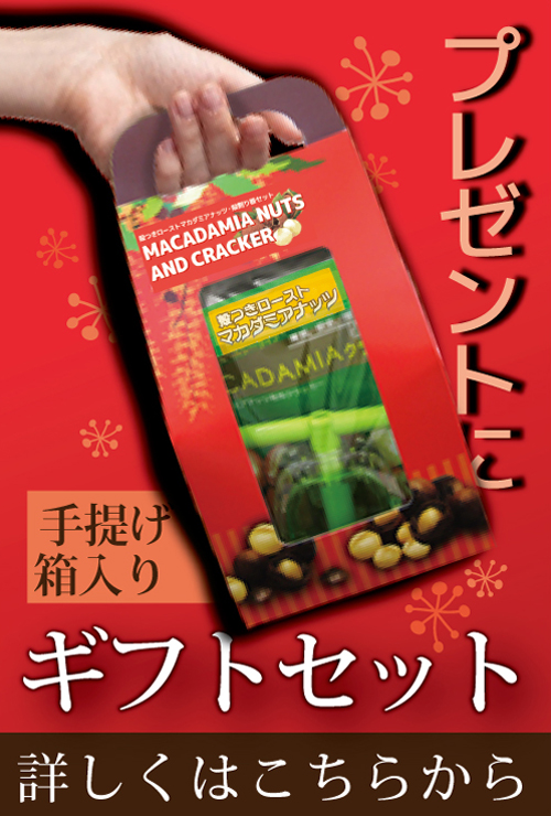 殻付マカダミアナッツ200gとプラスチッククラッカーのセット自然派健康食品なふりショップ