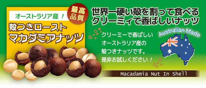 殻つきマカダミアナッツ 画像 自然派健康食品なふりショップ